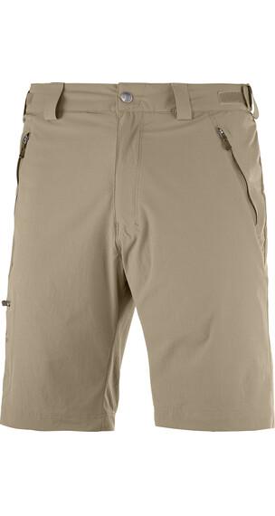 Salomon Wayfarer Shorts Men capers
